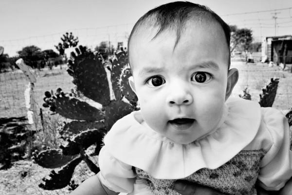 fotografia de bebés en monterrey fotos de embarazos monterrey fotografia de embrazadas monterrey